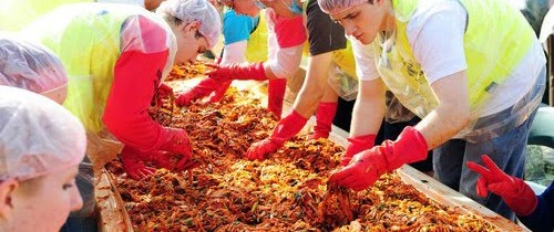 Kimchi in the News: Kimchi for charity in Yongsan