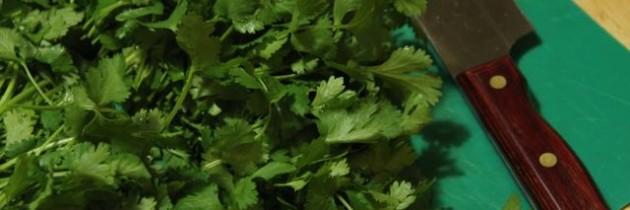 Recipe: Gosu (Cilantro) Kimchi 고수김치